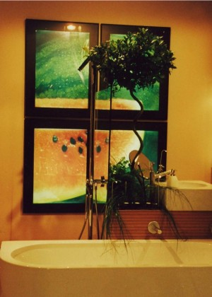 Bathroom (for Beyond the Hall Door TV Show)